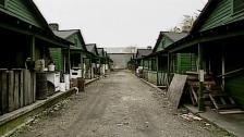 shacks